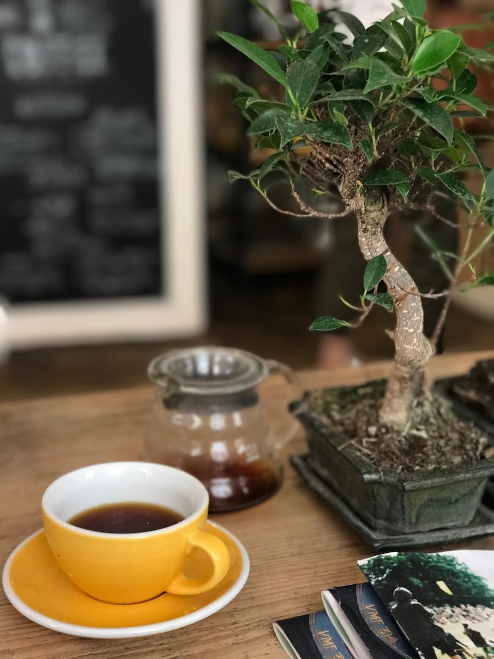SIP CAFE BORDEAUX