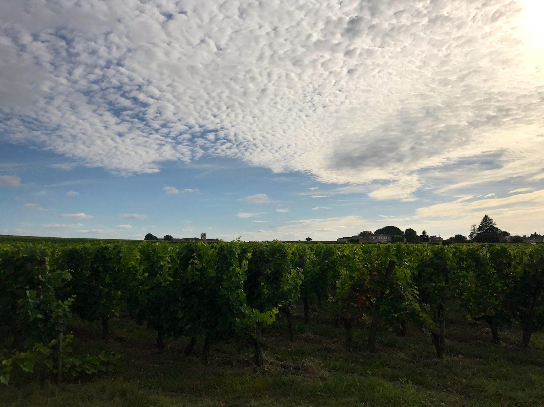 Un été à Bordeaux !