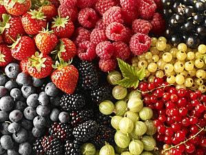 fruits 620x465