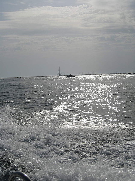 le-bassin-ete-2011 1850