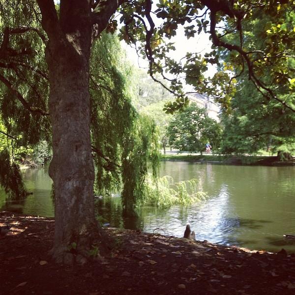 Jardin Publiic