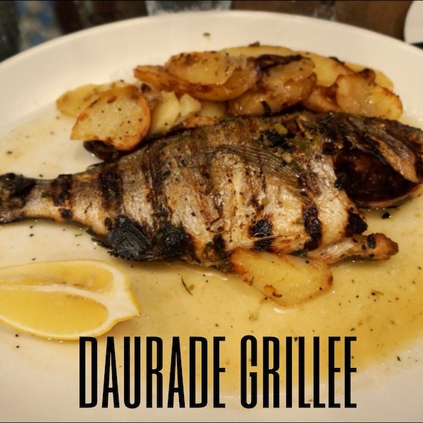 Daurade-Malte