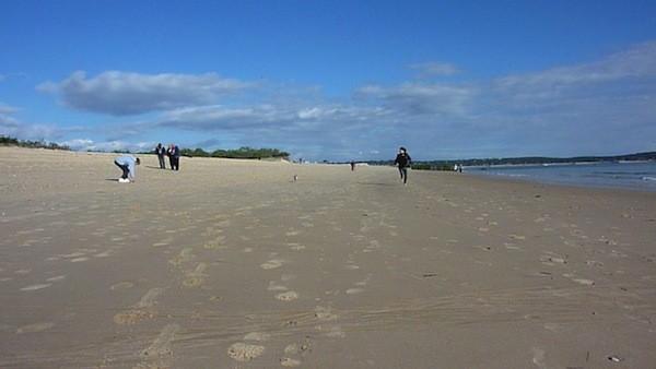 Perfecto en cuir sur fond sableux salé !