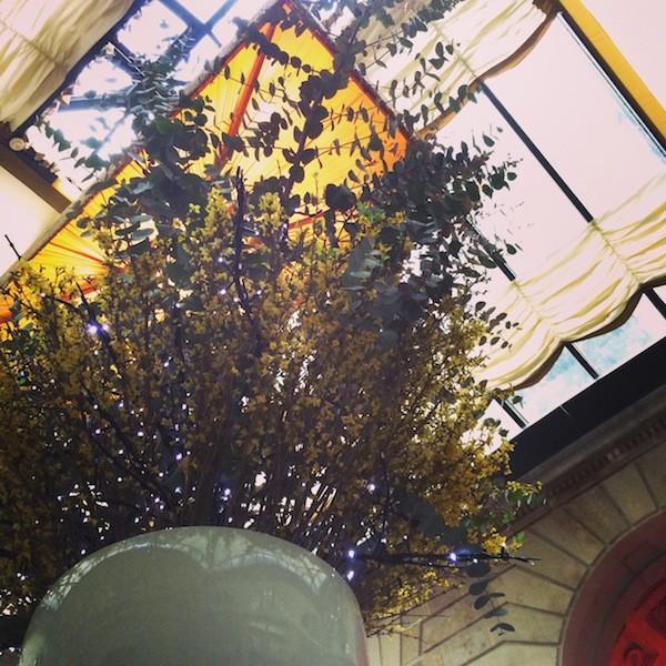 Grand Hôtel le Régent Place de la comédie Bordeaux