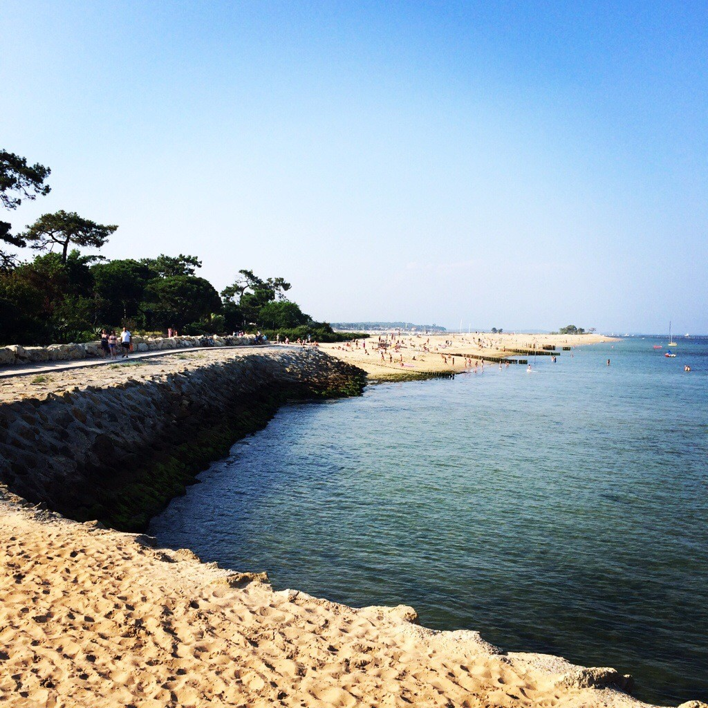24 heures au paradis: Les 44 hectares au Cap-ferret ! | Blog Enfin ...