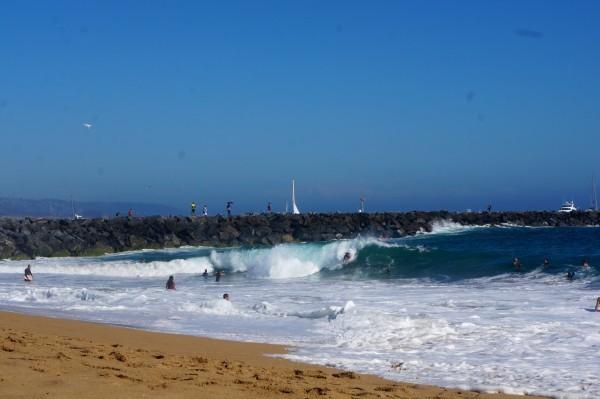 Pacific coast, Newport beach !