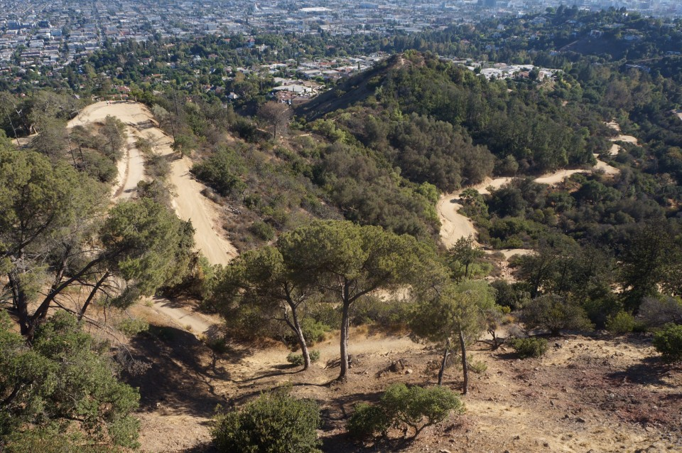Griffith obervatory Los Angeles