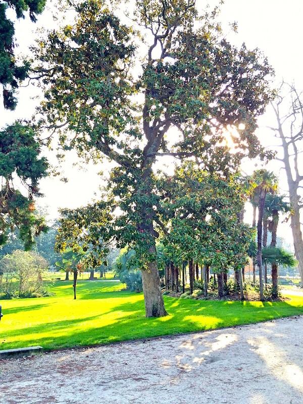 Parc du Jardin Public