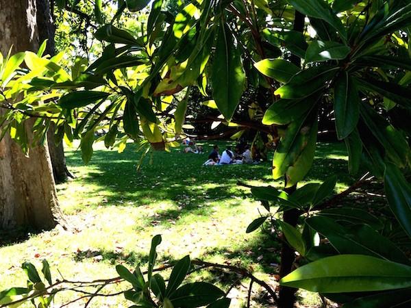 4 Jardin public Bordeaux