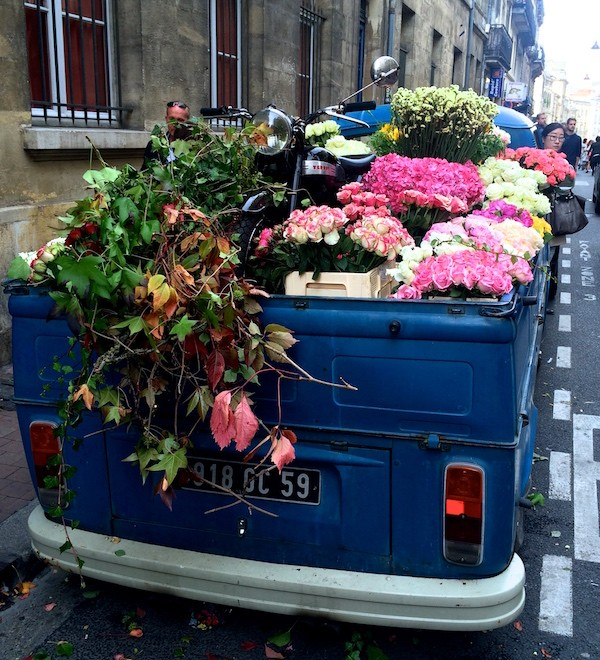 Monsieur Bloom fleuriste