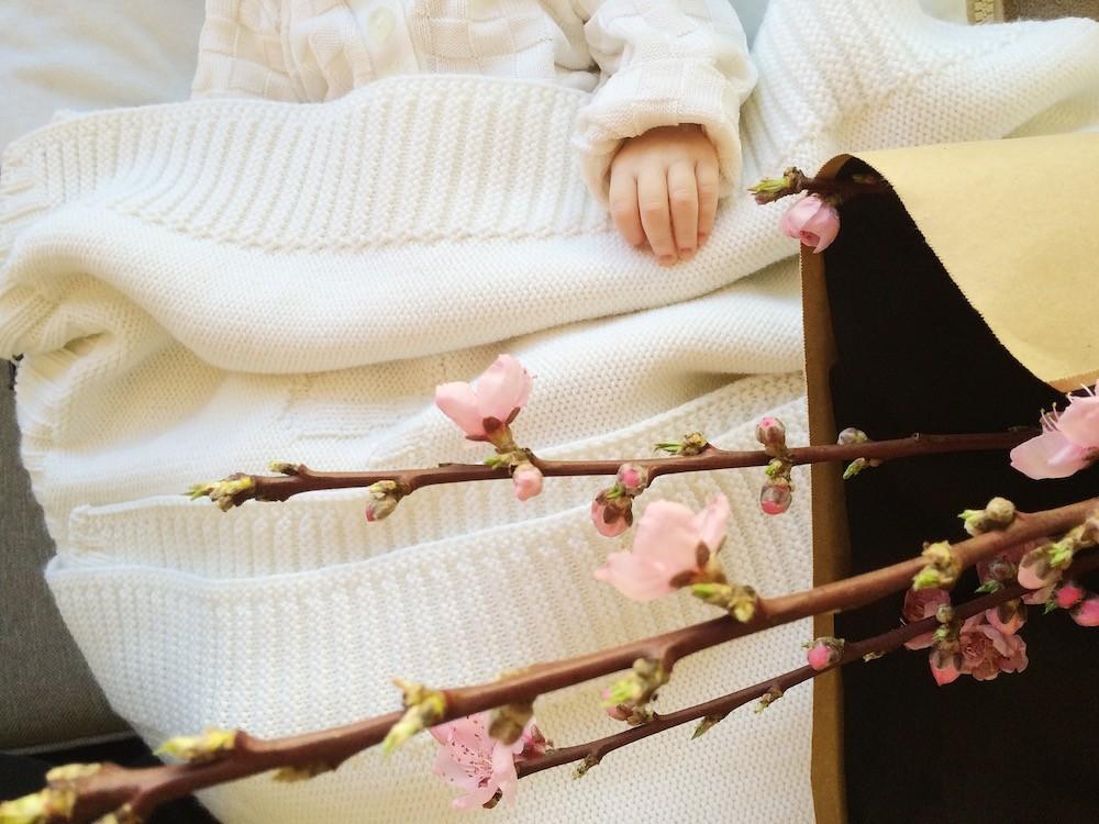 Pommiers en fleurs ! (207*)