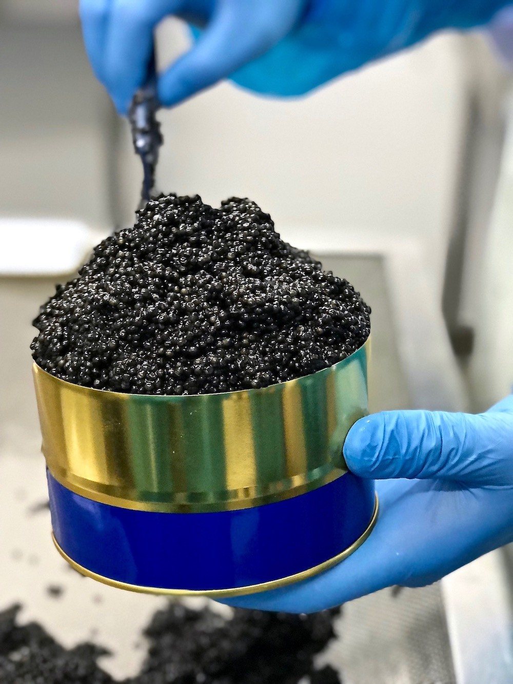 CAVIAR DE NEUVIC PRODUCTION