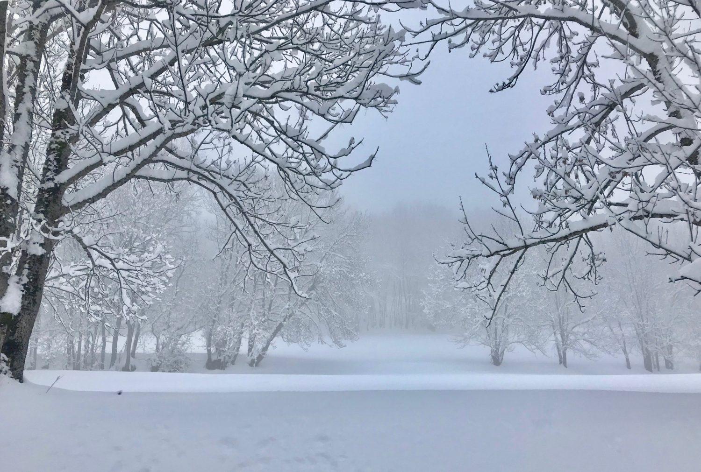 Snow Storm !