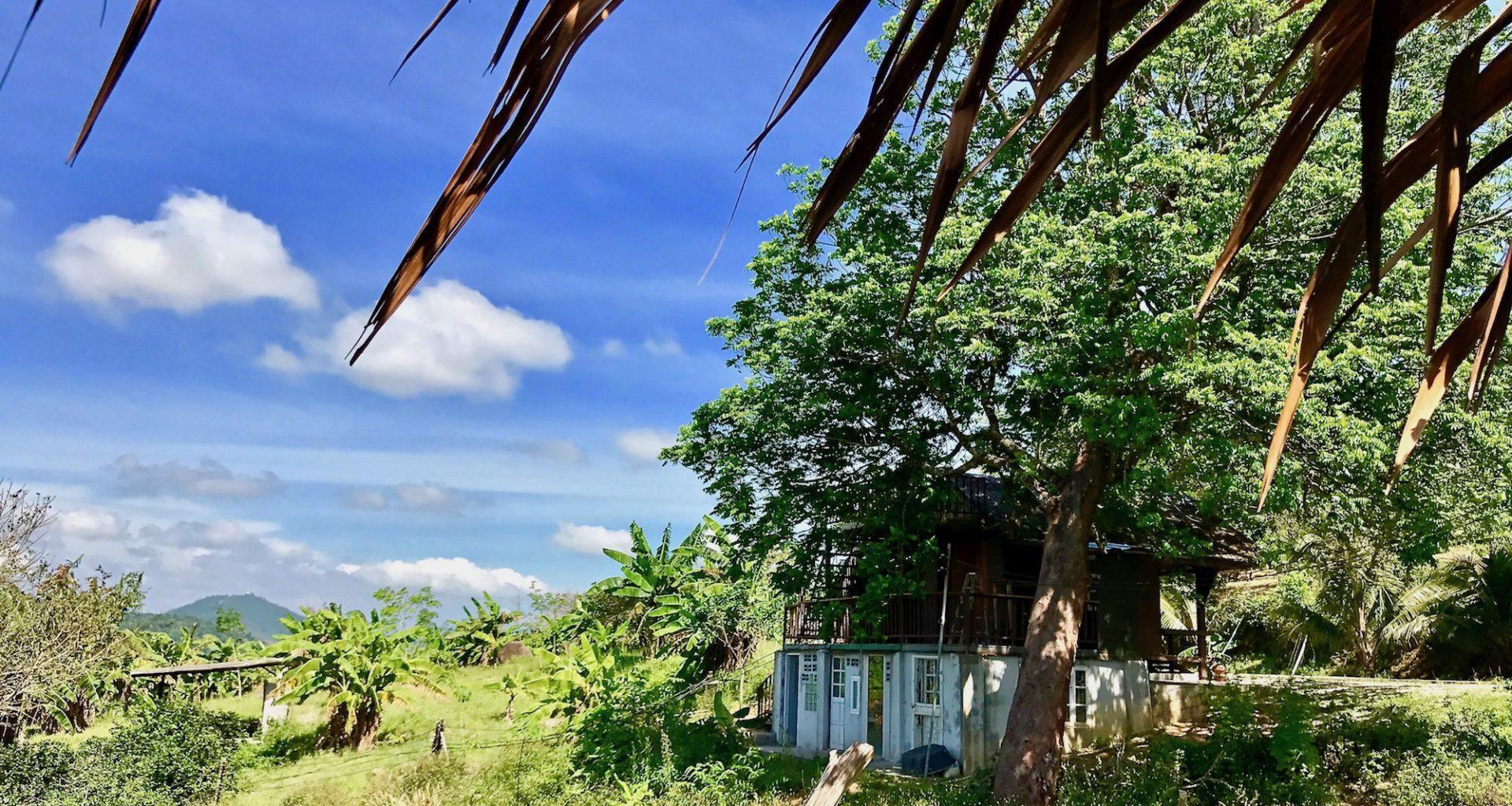 UN REVE REPARTIR EN THAILANDE